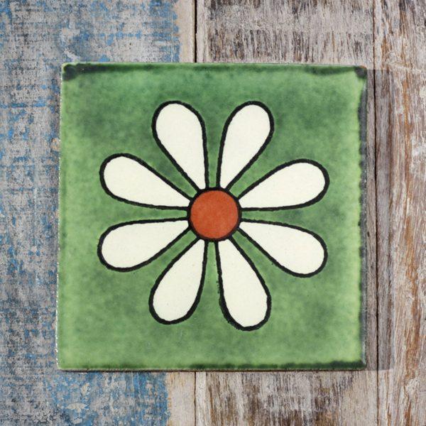 amapola verde caoba