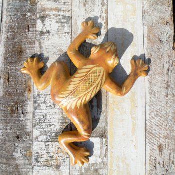 caoba-wall-frog-2