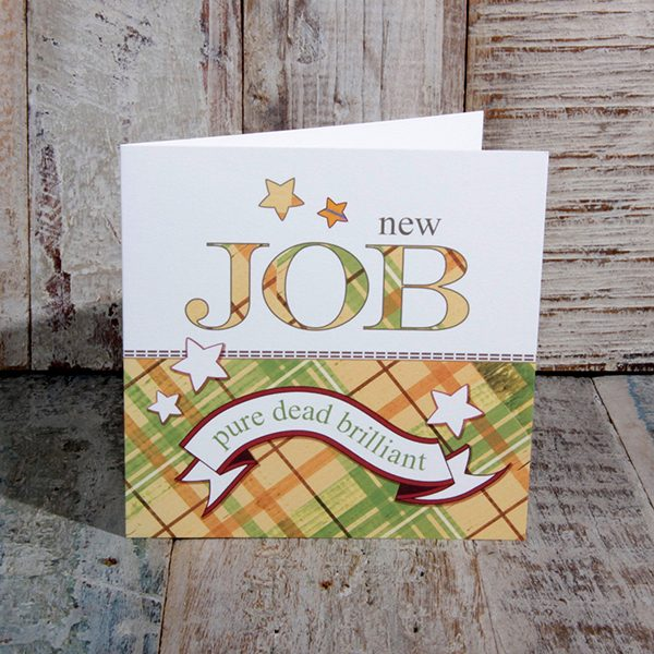 sjd 009 new job