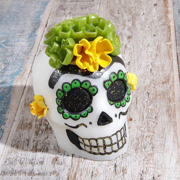 caoba skull 2